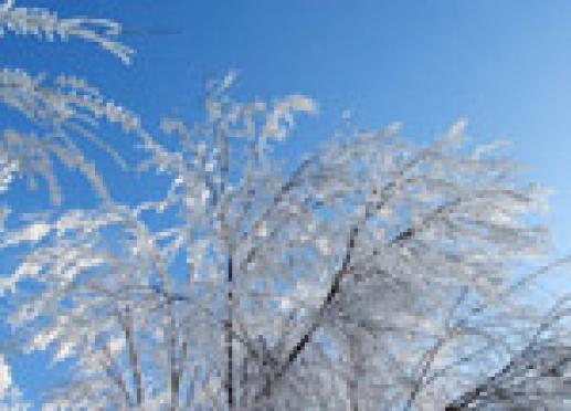 Холода в Марий Эл держатся из-за антициклонального типа погоды