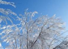 В конце недели в Марий Эл вновь ударят морозы