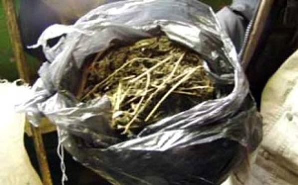 В Марий Эл полицейские изъяли маковую солому и коноплю