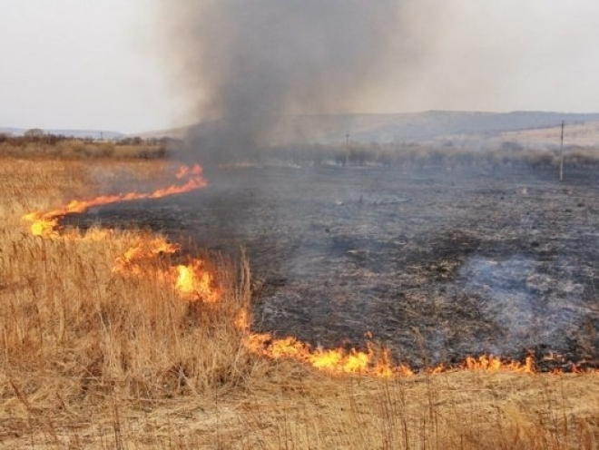В Марий Эл участились случаи возгорания сухой травы