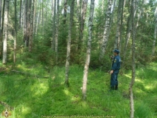 Пожилой мужчина блуждал в лесу три дня