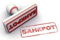 Стать банкротом за 300 рублей