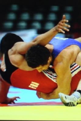 Республиканские соревнования по спортивной борьбе