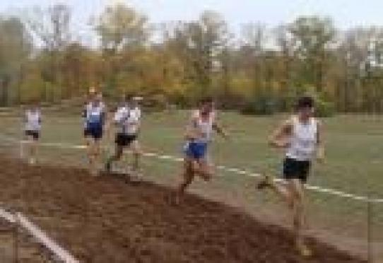 256 жителей Марий Эл в эти выходные соревновались в беге