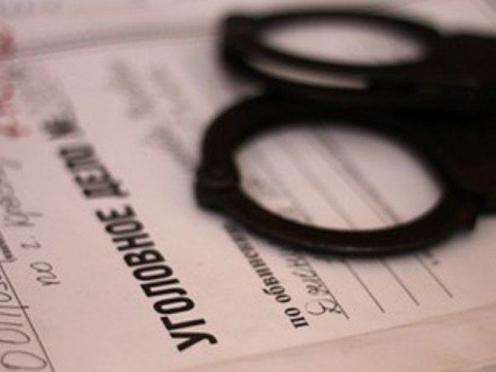 Полицейские задержали мужчину, находившегося в федеральном розыске за оскорбление власть имущего