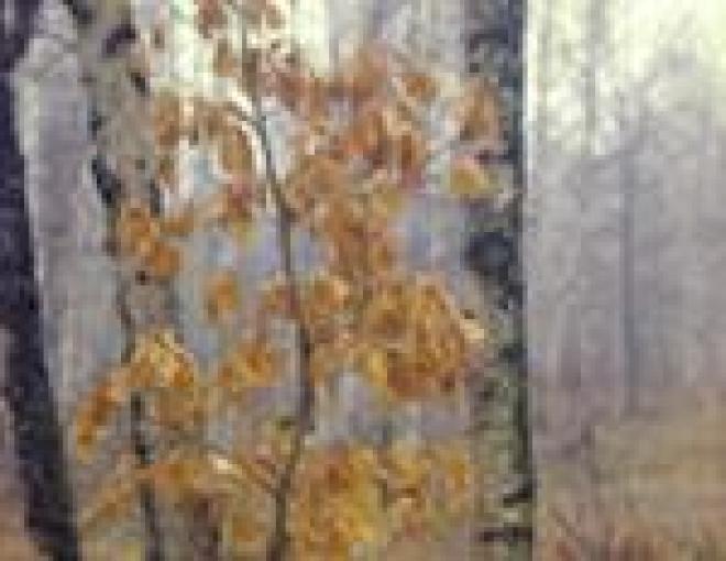 В Марий Эл не дадут гореть лесам