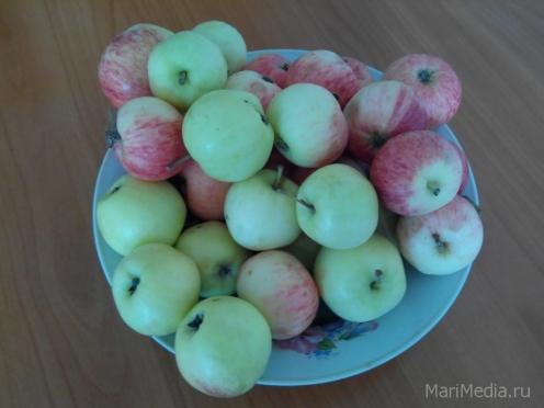 Православные верующие Марий Эл в храмы несут фрукты