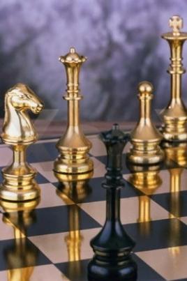 Первенство Республики Марий Эл по шахматам среди молодежи постер