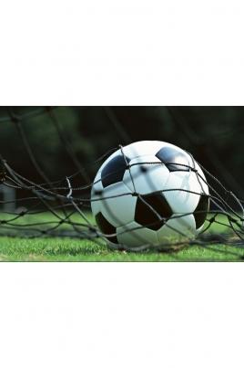 Чемпионат и первенство Республики Марий Эл по мини-футболу постер