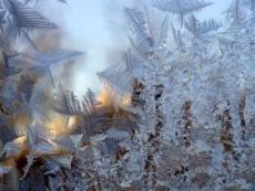 Синоптики обещают жителям Марий Эл морозную новогоднюю ночь