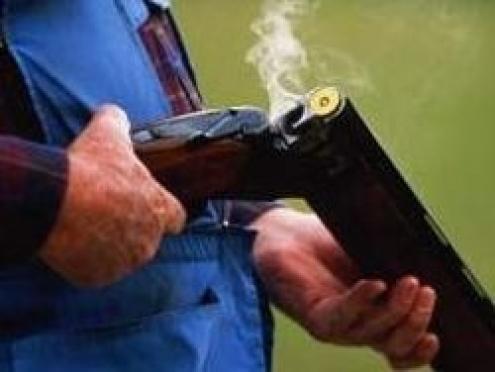 В Марий Эл браконьер, убивший лося, приговорен к исправительным работам