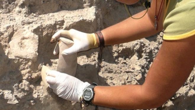 Археологи из Марий Эл вели раскопки в Костромской области