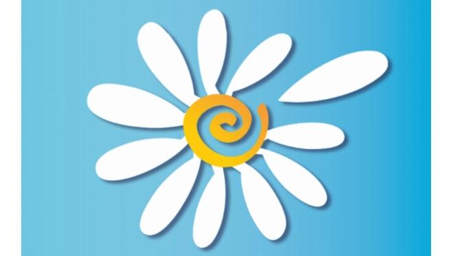 Ромашка – как символ всероссийского праздника