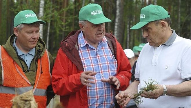 Свыше 20 тысяч сеянцев было высажено в Марий Эл во Всероссийский день посадки леса