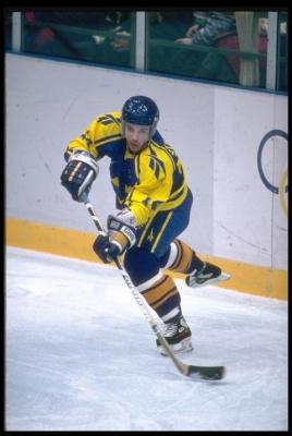 Чемпионат Республики Марий Эл по хоккею постер