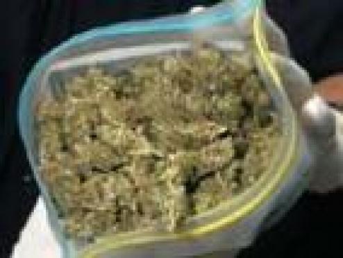 На счету наркополицейских Марий Эл 2 килограмма маковой соломки