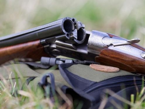 В хищении и сбыте оружия подозревают 35-летнего жителя Марий Эл