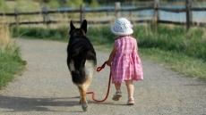 Родителей, чьи дети неправильно выгуливают собак, предлагают штрафовать