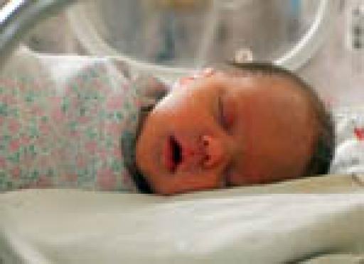 В Марий Эл повышается рождаемость и увеличивается количество браков