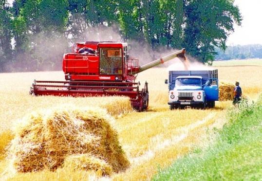 Сельхозтоваропроизводители Марий Эл подвели итоги уборочной страды