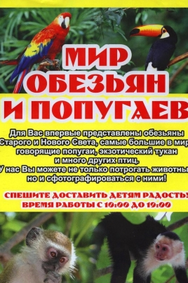 Мир обезьян и попугаев постер
