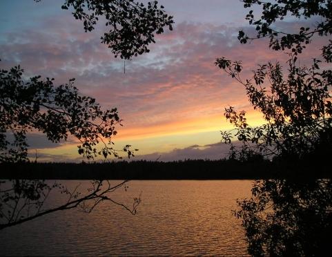 Заповедные озера Марий Эл: куда поехать в жаркие выходные