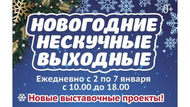 Музей изобразительных искусств в Йошкар-Оле объявил новогодние выходные нескучными