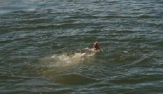 В Марий Эл утонул семилетний мальчик