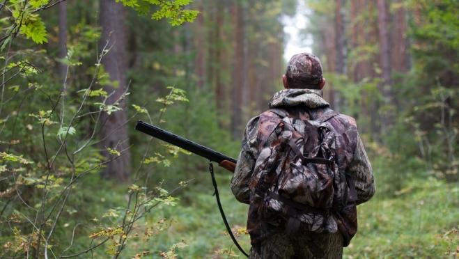 В Марий Эл охотники нашли в лесу тело женщины