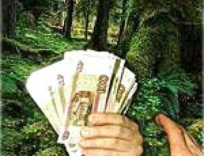 В Марий Эл задержана йошкаролинка, которая была объявлена в розыск за продажу фиктивных справок для призывников