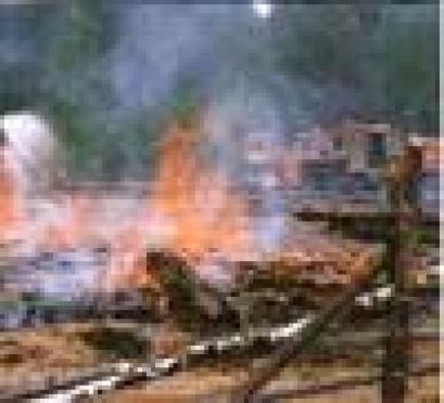 В Марий Эл в ходе весенней уборки сгорело 15 садовых домиков