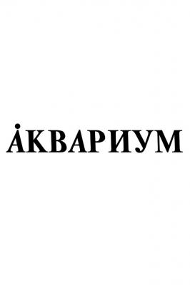 Борис Гребенщиков и гр.Аквариум