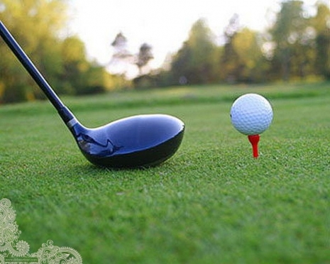 Школьников решили научить играть в гольф