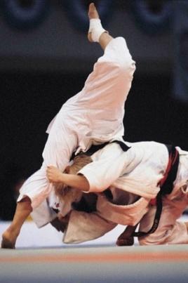 Межрегиональный турнир по дзюдо постер