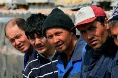 Марий Эл готова принять не более ста мигрантов в 2014 году