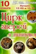 В Йошкар-Олу приезжает санкт-петербургский цирк зверей и лилипутов