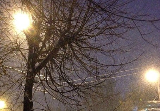 В день защитника Отечества в Марий Эл будет снежно и ветрено