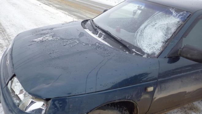 Автоледи сбила на загородной трассе женщину-пешехода