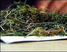 Сверток с марихуаной обошелся йошкар-олинскому предпринимателю в 10 тысяч рублей