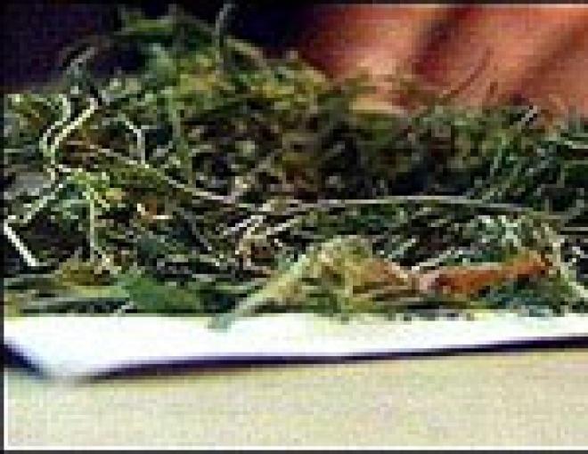 В Йошкар-Оле у офицера Управления наркоконтроля по Марий Эл изъяты наркотические вещества в особо крупном размере