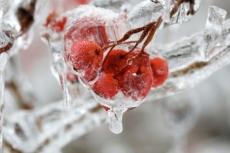 Синоптики прогнозируют резкие перепады температуры