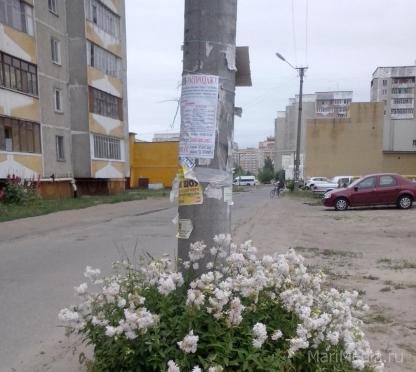 Йошкар-Ола избавляется от рекламы