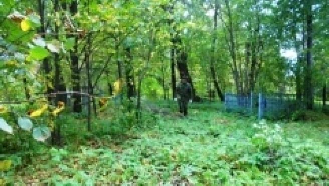 В селе Семёновка привели в порядок местное кладбище