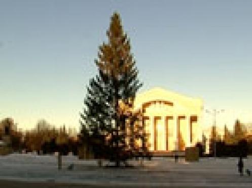 В четверг 20 декабря в центре Йошкар-Олы установят новогоднюю елку