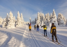 Лыжная база «Корта» подстраивается под капризы погоды