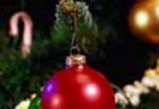 В Йошкар-Оле ближе к Новому году появится более 20 ёлок
