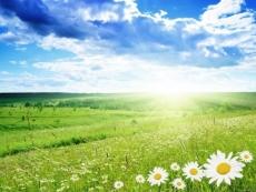 В выходные в Марий Эл прогнозируется аномально жаркая погода