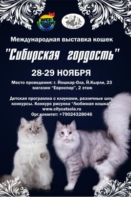 Сибирская гордость постер