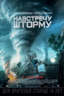 Навстречу штормуInto the Storm постер