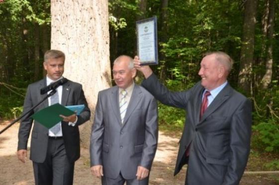 Дуб Пугачева официально признан памятником живой природы